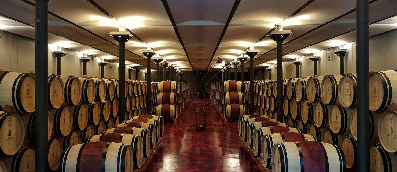 Ornellaia Weingut Winery Bolgheri Castagneto Carducci Toskana Tuscany Björn Bittner Weinkeller Keller Cellar Fässer