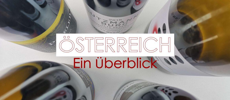 Österreich Wein Überblick Austrian Wine Summit Weingipfel ÖWM Österreich Wein Marketing Burgenland Blaufränkisch Steiermark Wien Rebsorten Rebfläche Informationen