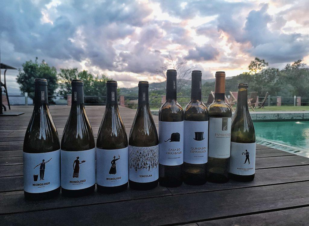 Vinho Verde Great European Wines Porto AD Wines Monologo