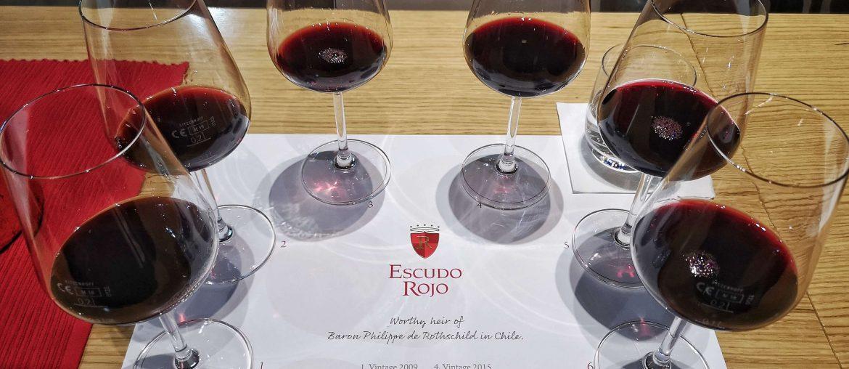 Escudo Rojo Chile Bordeaux Baron Philippe de Rotschild Hamburg Tasting Verkostung Vertikal Vertical Cabernet Sauvignon Carmenere