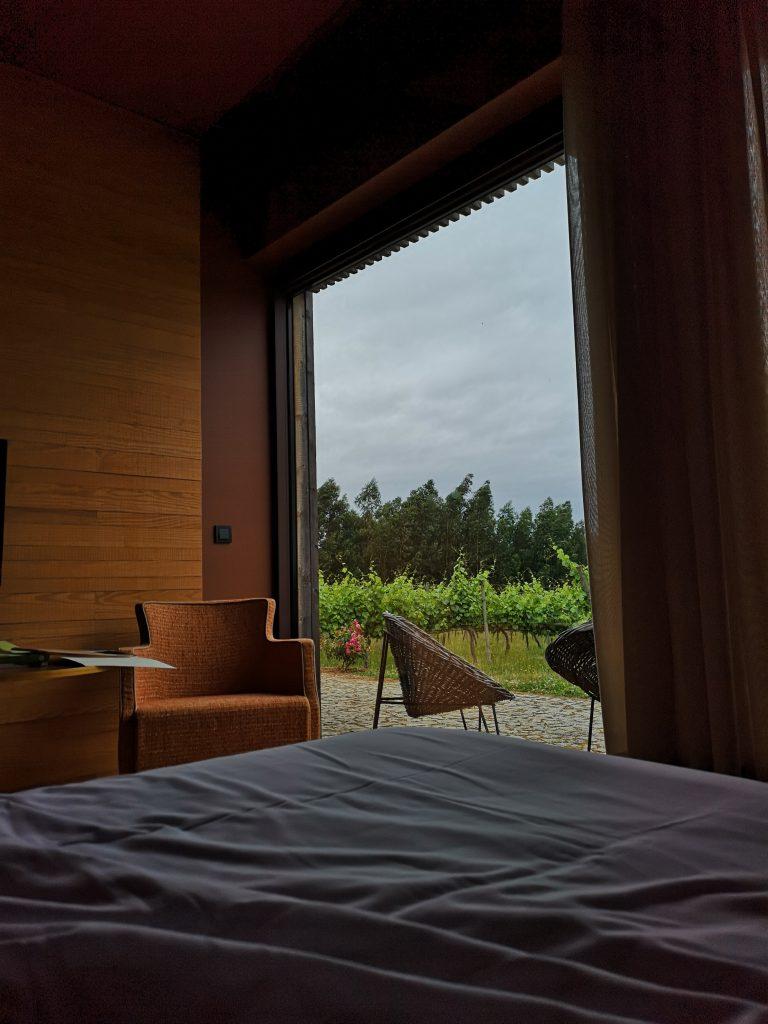 Portugal Vinho Verde Reise Reisebericht Hotel Reben Weinberg Vineyard View Aussicht