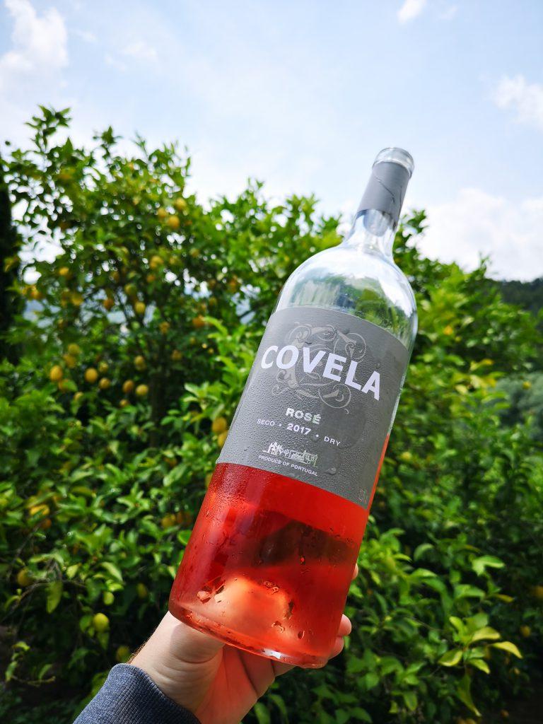 Portugal Vinho Verde Reise Reisebericht Quinta Covela Rosé Zitronenbaum