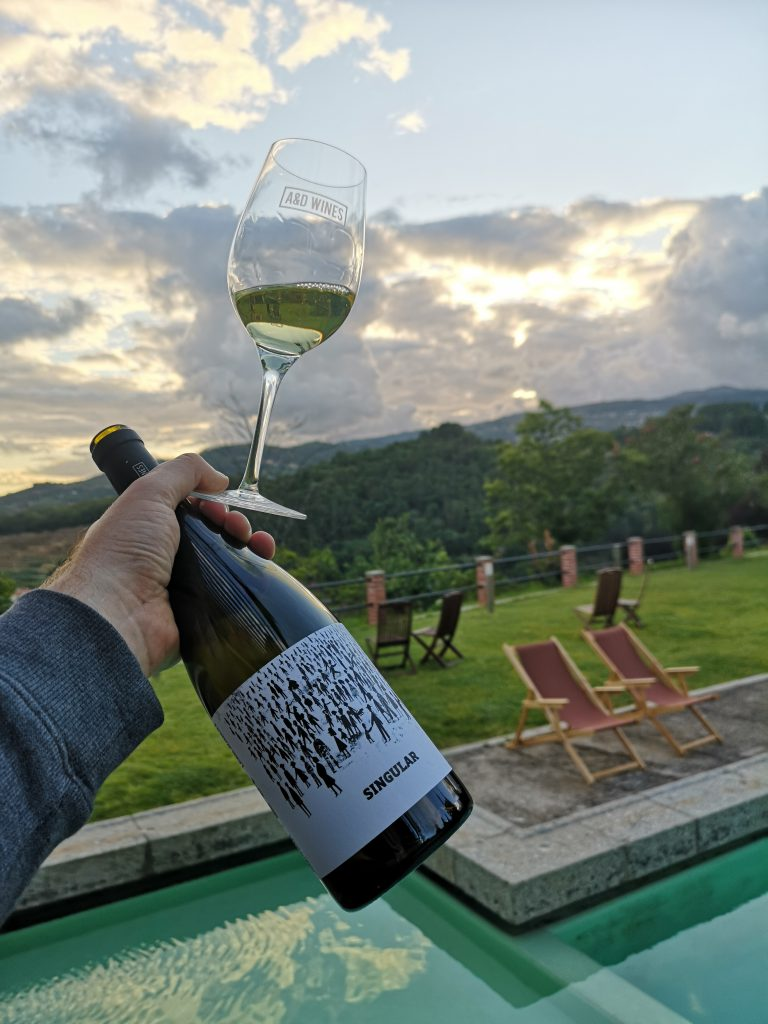 Portugal Vinho Verde Reise Reisebericht Singular Arinto Avesso AD Wines Weingut Quinta