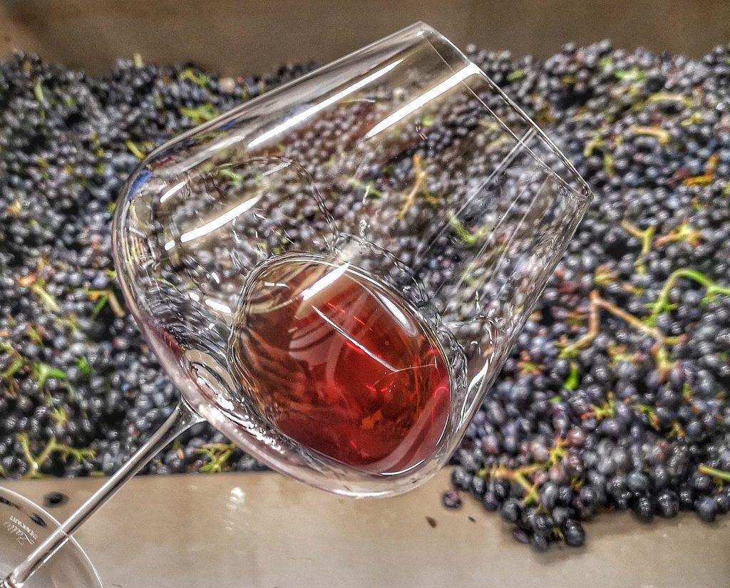 Castelfeder Südtirol Pinot Zalto Burgund Noir Burgum Novum Grapes Trauben Presse