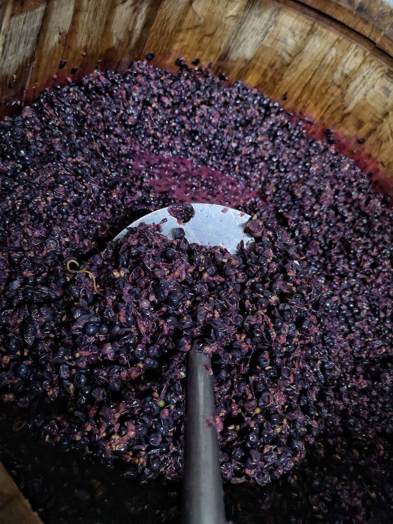 Castelfeder Pinot Nero Noir Späburgunder Pressen Press Wein