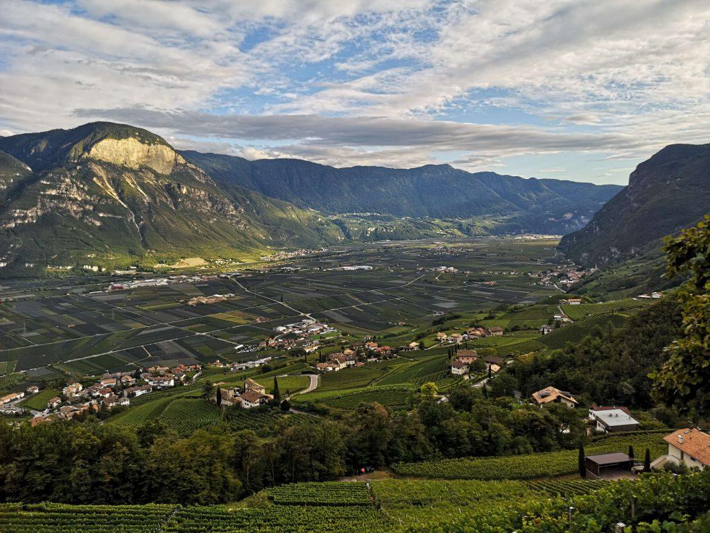 Castelfeder Südtirol Rebfläche Weingarten Weinstraße Neumarkt Kurtinig
