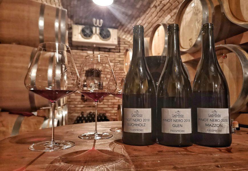 Castelfeder in Südtirol – Das Weingut an der Weinstraße